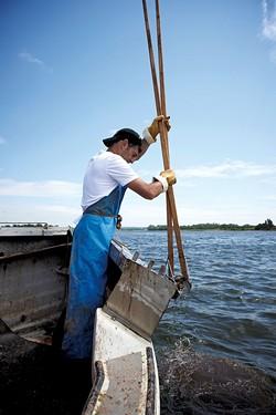 Rowan Jacobsen tonging oysters - COURTESY OF ROWAN JACOBSEN