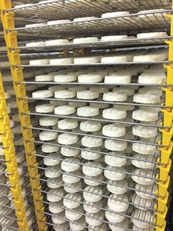 St. Albans cheese drying on racks at Vermont Creamery - HANNAH PALMER EGAN