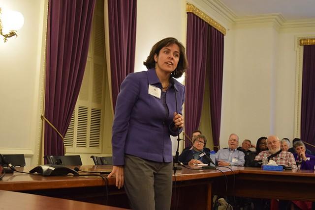 Democratic speaker nominee Mitzi Johnson addresses House Democrats on Saturday. - TERRI HALLENBECK