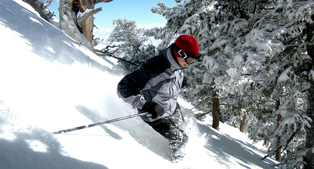 Downhill in some powder - DREAMSTIME