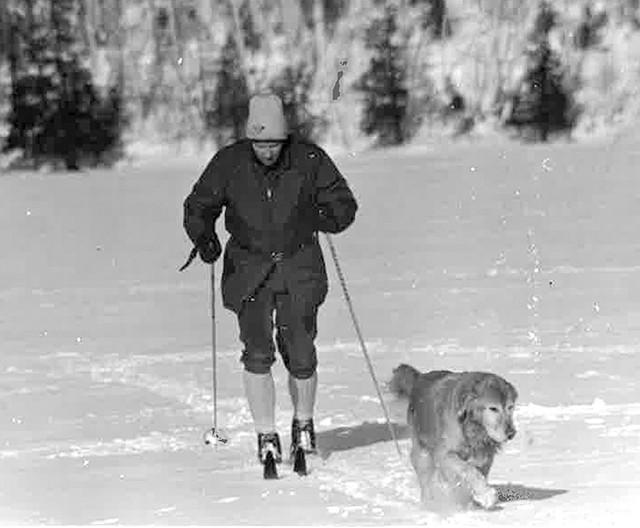 Jim Henry and dog - COURTESY OF JIM HENRY