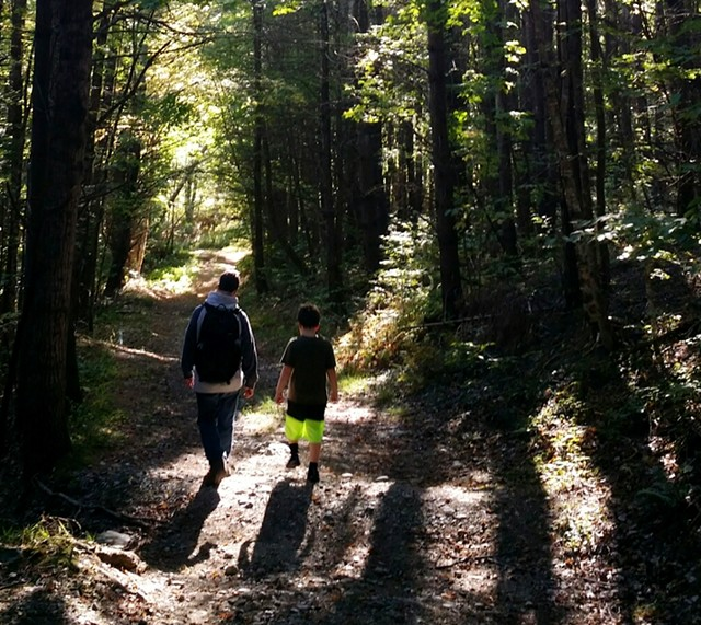 A path through the proposed Richmond town forest - COURTESY PHOTO BY LOU BORIE