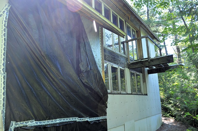 The back of the house - SASHA GOLDSTEIN