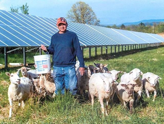 Juan De La Cruz with his sheep - COURTESY: KIRSTEN DE LA CRUZ