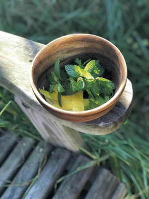 Fresh mint and lemon peel for simple syrup - SUZANNE PODHAIZER