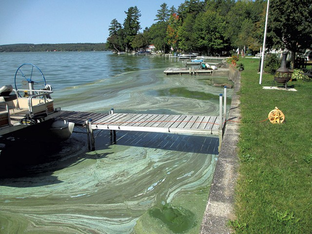 Blue-green algae in front of Dick and Cheryl Benton's home on Lake Carmi earlier this year - COURTESY OF DICK BENTON
