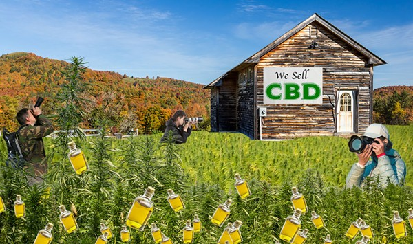 The Parmelee Post: Visitors Flock to Vermont to See Leaves Change to CBD