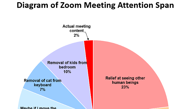 Burlington Resident's Zoom Meeting Meme Goes Viral