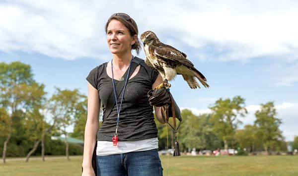 Talon Scouting With a Vermont Falconer