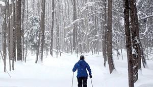 Snow Go: Short Winters, Warm Temperatures Bedevil Vermont's Nordic Ski Areas