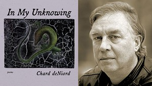 Book Review: 'In My Unknowing,' Chard deNiord