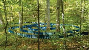 "Art Review: ""Together: Nature Unites Us,"" Elizabeth Billings, Nature Conservancy Natural Areas"