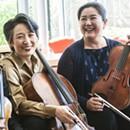 Borromeo Quartet