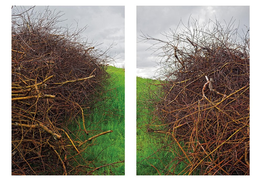 """Apple Pruning Brush Piles in Spring Rain, Putney, VT"" by Brent Seabrook"