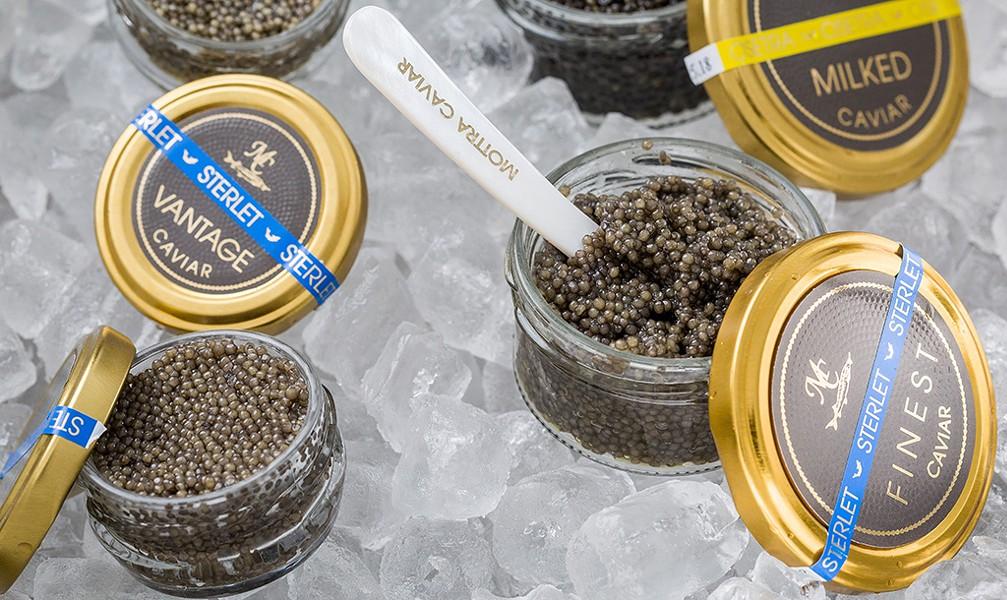 Mottra Caviar - OLIVER PARINI
