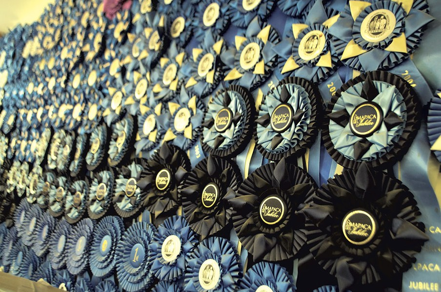 Championship ribbons won in alpaca shows - HANNAH PALMER EGAN