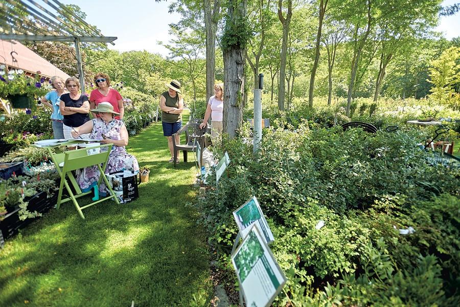 Ginny Joyner teaching a plein air watercolor painting workshop at Horsford Gardens and Nursery - BEAR CIERI
