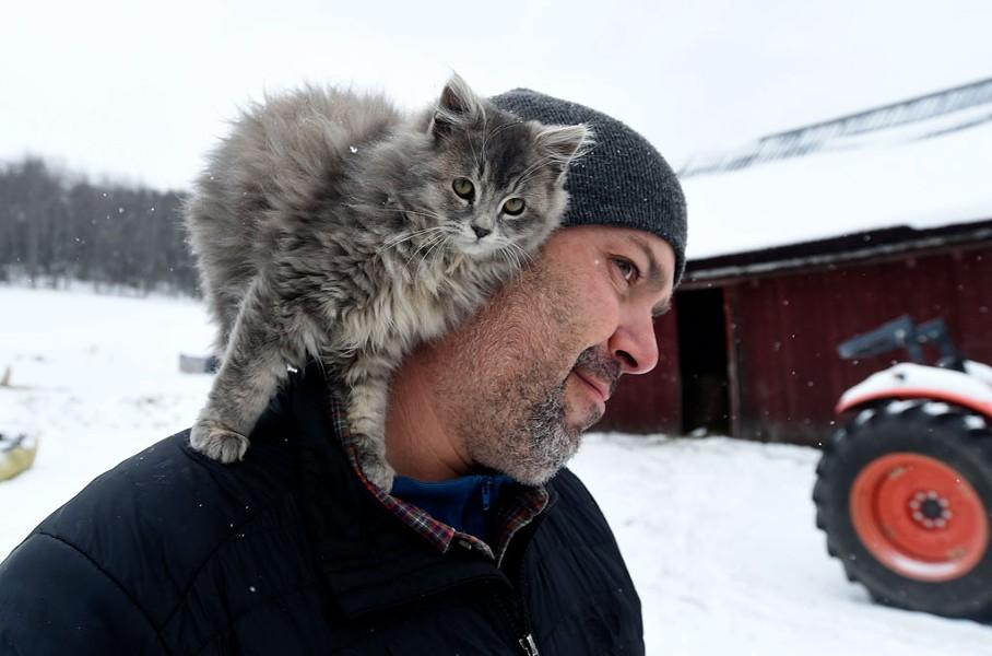 Farmworker Joe Thompson with a barn cat - JEB WALLACE-BRODEUR