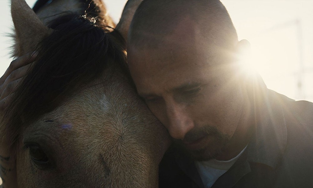 WILD HORSES: Schoenaerts plays a convict who fi nds hope in an unlikely place in Clermont-Tonnerre's directorial debut. - FOCUS FEATURES