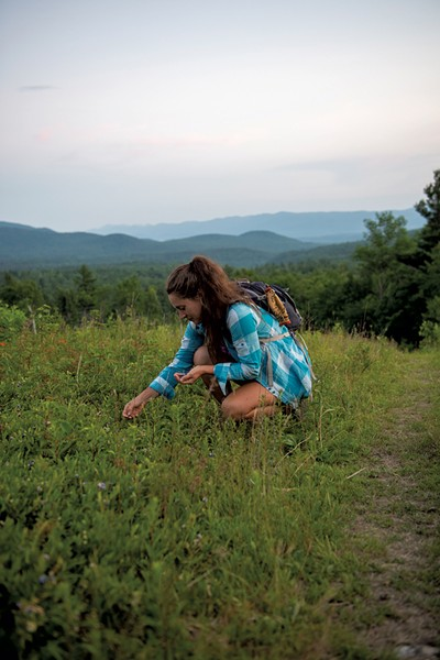 Carly Averill picking berries in the Green Mountain National Forest - CALEB KENNA ©️ SEVEN DAYS