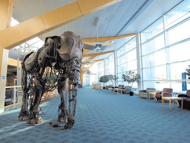Elephant sculpture by Vermont artist Eben Markowski - MATTHEW THORSEN