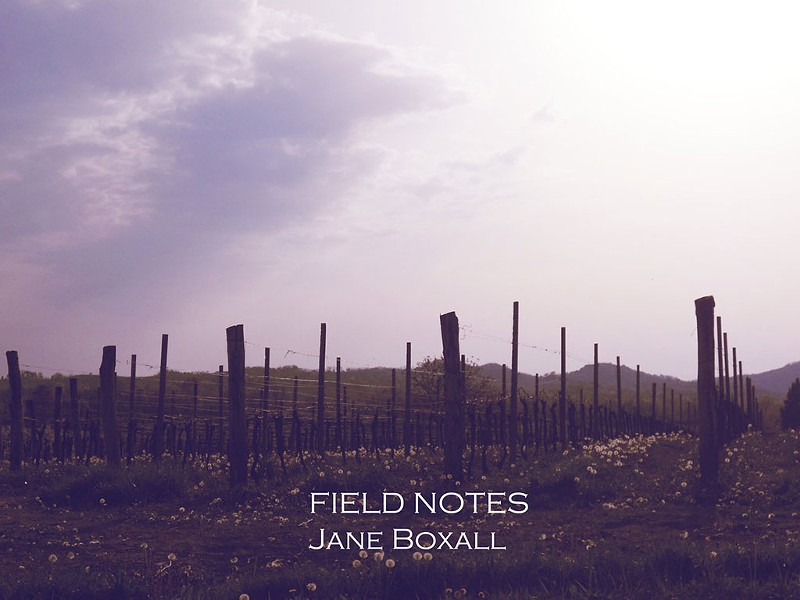 Jane Boxall, Field Notes