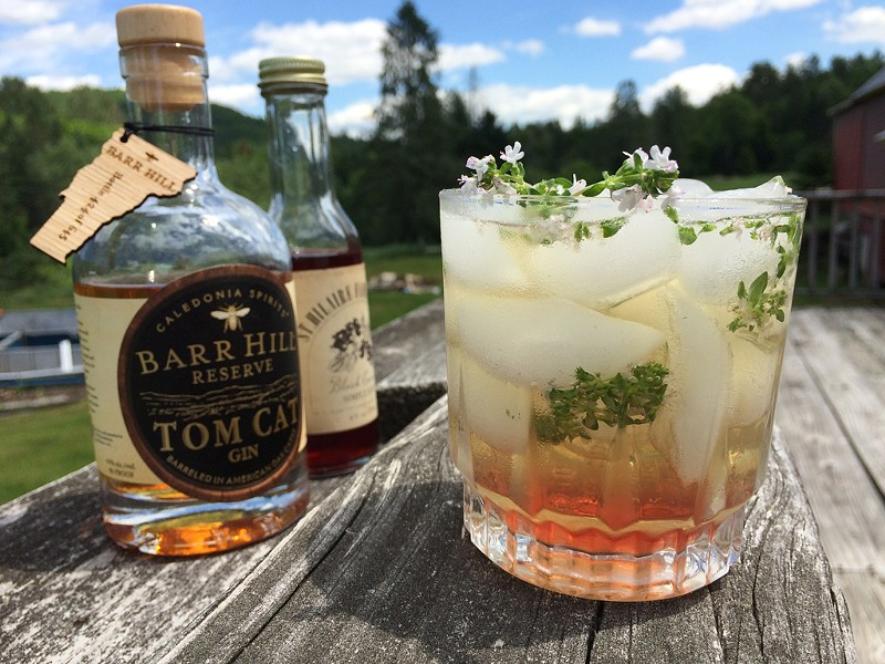 Tom Cat, Thyme and Tonic - HANNAH PALMER EGAN