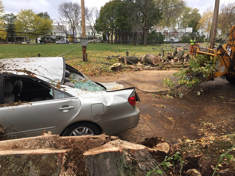 A large tree crushed a car and took down power lines in Burlington's Lakeside neighborhood. - SASHA GOLDSTEIN