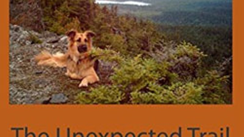 The First 50 Pages: The Unexpected Trail