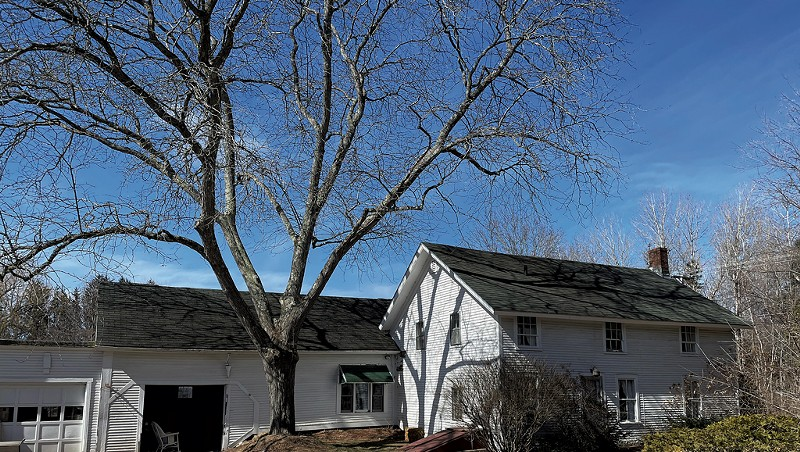 WTF: Why Is Someone Giving Away a Free House in Shelburne?