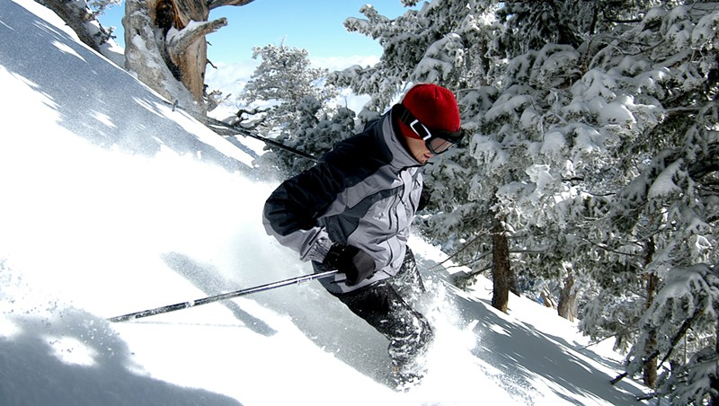 Downhill in some powder