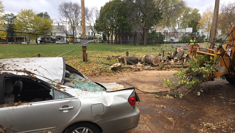 A large tree crushed a car and took down power lines in Burlington's Lakeside neighborhood.