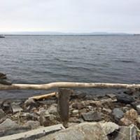 Natural Artwork on the Burlington Waterfront  Sasha Goldstein