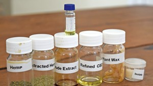 Samples of extractions from hemp