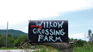 Willow Crossing Farm mailbox