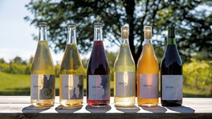 Iapetus wines at Shelburne Vineyard