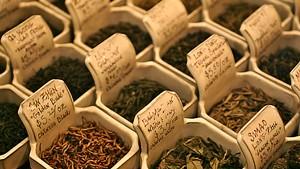 Best teahouse