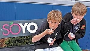 New World Tortilla Acquires SoYo Frozen Yogurt