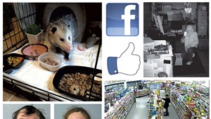 A rescued opossum, mug shots and a photo of a crime in progress from the South Burlington Police Department's Facebook page