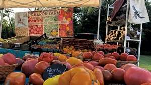 Heirloom tomatoes from Blue Heron Farm