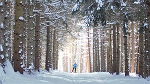 Cross-country skiing at Rikert Nordic Center