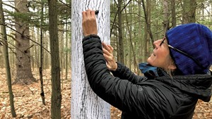 Elizabeth Billings doing a tree rubbing at the LaPlatte River Marsh Natural Area