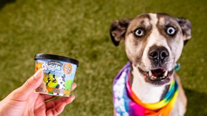 Rosie and the new Ben & Jerry's dog dessert named after her