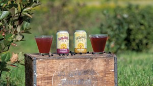 Shrubbly, a nonalcoholic beverage made with Aronia berries