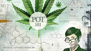 UVM Launches Cannabis Speaker Series Online
