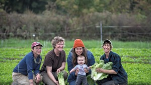 From left: Sophie Cassel, Sophie Howat, Andrea Solazzo with her baby, Lucia Solazzo Dunseith, and Hilary Martin among baby chicory at the Diggers' Mirth Collective Farm