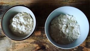 Homemade goat's milk ricotta
