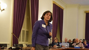 Democratic speaker nominee Mitzi Johnson addresses House Democrats on Saturday.