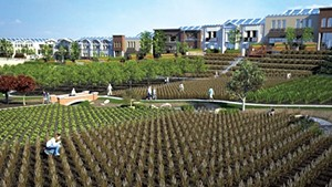 A rendering of the NewVista development