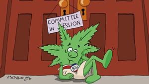 Scott Administration Opposes Vermont Marijuana Legalization Bill